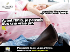 IMIS_mini_flyer